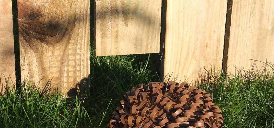Cumbrian Homebuilder Leads The Way By Creating Hedgehog Highways