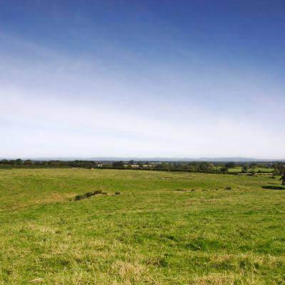 Hawksdale Pastures